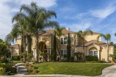 Riverside Single Family Home For Sale: 6905 Royal Hunt Ridge Drive