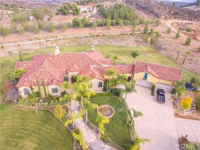 Hemet Single Family Home For Sale: 39970 Ravenna Lane