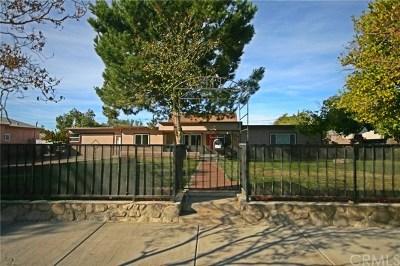Redlands Single Family Home For Sale: 919 Tribune Street