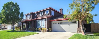 Eastvale Single Family Home For Sale: 6971 Song Sparrow Road