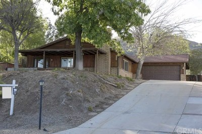 Canyon Lake Single Family Home For Sale: 30850 Emperor Drive