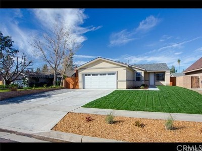Redlands Single Family Home For Sale: 1541 Robyn Street