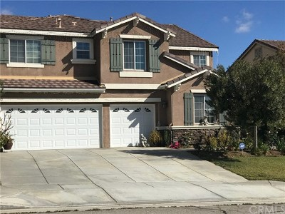 Perris Single Family Home For Sale: 582 Quigley Lane