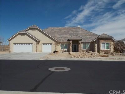 Apple Valley Single Family Home For Sale: 11223 Lindsay Lane