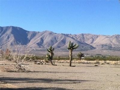 Victorville Residential Lots & Land For Sale: Desert Flower Road
