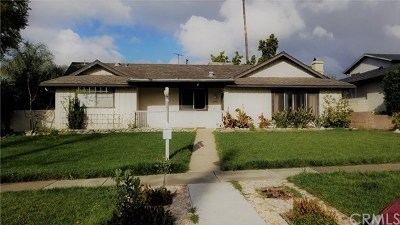 Upland Single Family Home For Sale: 1381 N 3rd Avenue