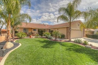 Canyon Lake Single Family Home For Sale: 23376 Gray Fox Drive