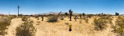 San Bernardino County Residential Lots & Land For Sale: 1 Desert View Road