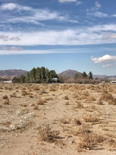 Lucerne Valley Residential Lots & Land For Sale: Hwy 18