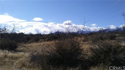 Hesperia Residential Lots & Land For Sale: Rainbow And Mesquite