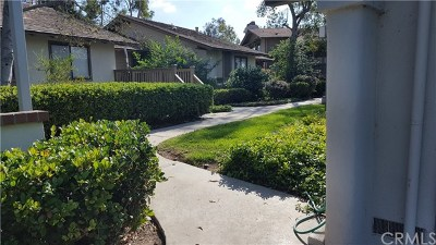 Irvine Condo/Townhouse For Sale: 56 Arboles #47