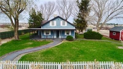 Helendale Single Family Home For Sale: 26532 Orebaugh Lane