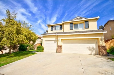 Lake Elsinore Single Family Home For Sale: 31936 Poppy Way