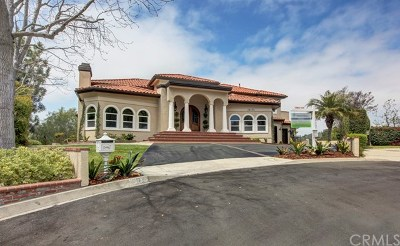 Chino Hills Single Family Home For Sale: 16174 Westridge