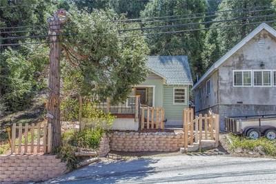 Lake Arrowhead Single Family Home For Sale: 843 Arrowhead Villa Road