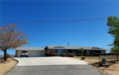 Hesperia Single Family Home For Sale: 18689 Wisteria