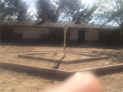 Apple Valley Single Family Home For Sale: 16679 Tenaja Road