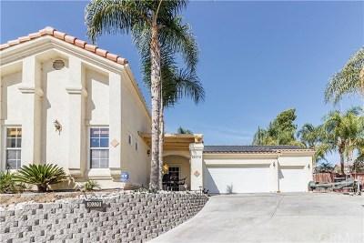 Canyon Lake Single Family Home For Sale: 30370 Spray Drive