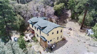 Wrightwood Single Family Home For Sale: 5826 Acorn Drive