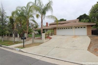 Corona Single Family Home For Sale: 19630 Blacksmith