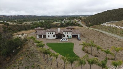 Murrieta Single Family Home For Sale: 40102 Sierra De Ronda