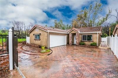 Lake Elsinore Single Family Home For Sale: 31144 Kansas
