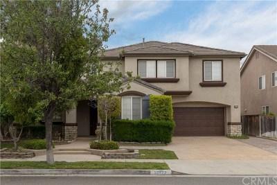 Murrieta Single Family Home For Sale: 38122 Clear Creek Street