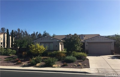 Murrieta Single Family Home For Sale: 25397 Champlain Avenue