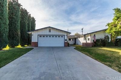 Redlands Single Family Home For Sale: 221 Georgia Street