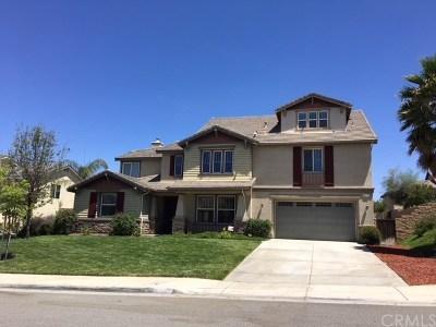 Riverside Single Family Home For Sale: 19770 Lonestar Lane