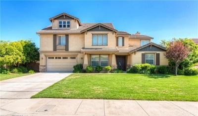 Riverside Single Family Home For Sale: 19699 Lonestar Lane