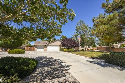 Apple Valley Single Family Home For Sale: 19192 Cochise Court