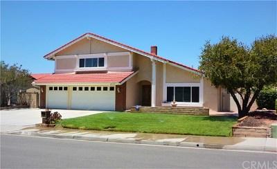 Riverside Single Family Home For Sale: 1241 Grossmont Drive