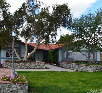 Moreno Valley Single Family Home For Sale: 12285 Elf Owl Lane