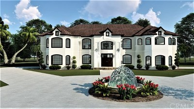 Colton Single Family Home For Sale: 7110 Luane Trail