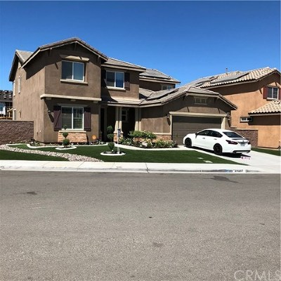 Lake Elsinore Single Family Home For Sale: 29297 Link