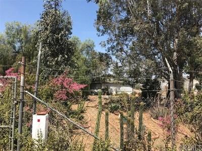 Jurupa Single Family Home For Sale: 6231 Morton Avenue