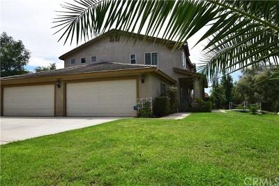 Yucaipa Single Family Home For Sale: 12923 Holmes Street