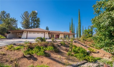 Riverside Single Family Home For Sale: 15607 Saddleback Road