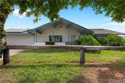Jurupa Single Family Home For Sale: 4712 Shetland Lane
