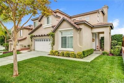Murrieta Single Family Home For Sale: 38945 Turtle Pond Lane
