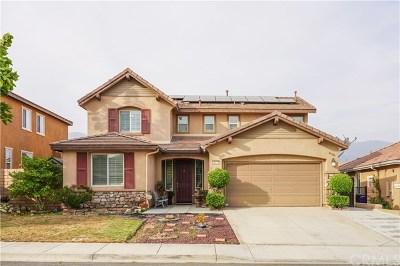 San Bernardino Single Family Home For Sale: 4077 White Ash Road