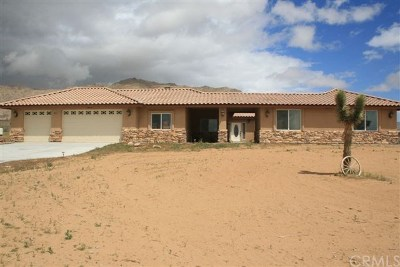 Apple Valley Single Family Home For Sale: 16323 Shirwaun Road