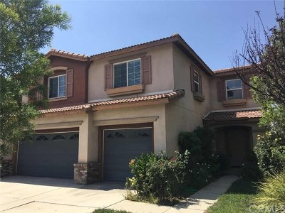 Lake Elsinore Single Family Home For Sale: 45013 Carla Court
