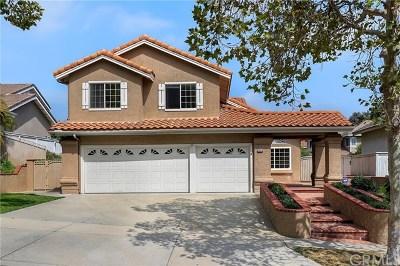 Corona Single Family Home For Sale: 1390 Elderwood Drive