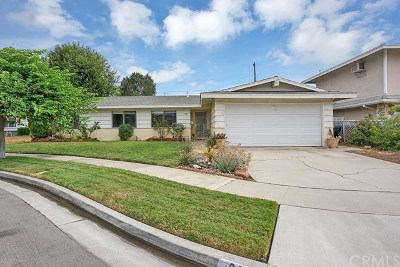Placentia Single Family Home For Sale: 313 Eagle Drive