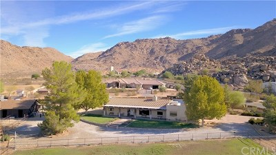 Apple Valley Single Family Home For Sale: 16750 Moccasin Road