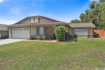 Rialto Single Family Home For Sale: 802 S Fillmore Avenue