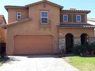 Perris Single Family Home For Sale: 1183 Reisling