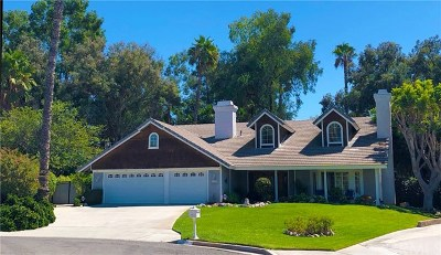 Riverside, Temecula Single Family Home For Sale: 1600 Ramsgate Court